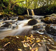 Garw Nant Waterfall by Steve  Liptrot