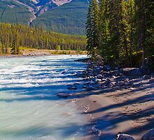 Canada. Canadian Rockies. Jasper National Park. Athabasca River. by vadim19