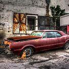 Auto Shop of Last Resort by njordphoto