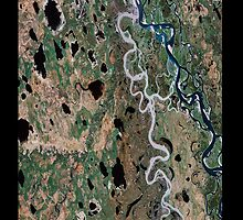 """""""Earth - The Amazon"""" - phone by Michelle Lee Willsmore"""