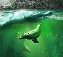 Dolphins by SSDema