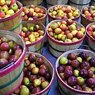 Fall Apples by Laurie Perry