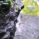 Jagged Rocks by Tom Dwyer