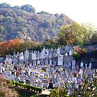 Cemetery in Vienne, France by Laurel Talabere