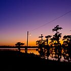 Gazing at a Bayou Sunset by Jessica Tamler