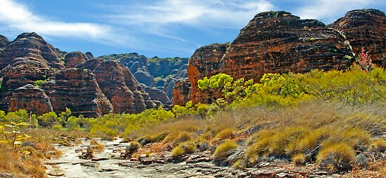 BUNGLE BUNGLES by Raoul Madden