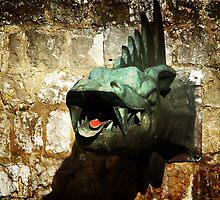 Dragon by RosiLorz