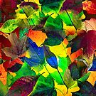 Colors of Fall by Richard Murch
