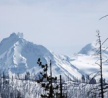 Snow Covered Cascade Mountains of Oregon by mrsroadrunner