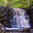 Yorkshire: Sunlight on Kidson Force by Rob Parsons
