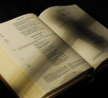Crucifix shadow on French Holy Bible by Sami Sarkis