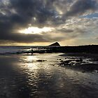Mewstone by sbarnesphotos