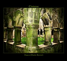 Irish Cloister by IrishPirate