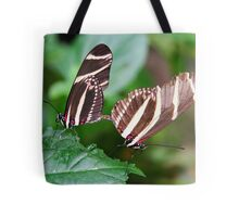 Mating Zebra Longwing - Heliconius charithonia Tote Bag