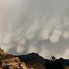 Storm clouds over Ruby Mts. by teresalynwillis