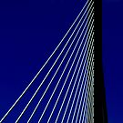 The Bridge (iPhone Case) by AuntDot
