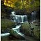 Ricketts Glen State Park & State Game Lands #13