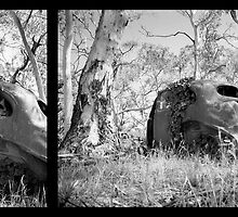 Nature reclaims (diptych) by Mark Will