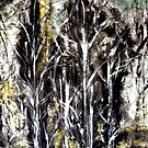 conversation.... in silver birch wood by banrai