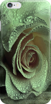 """iPhone Case """"Rose of Love ..."""" by Rosehaven"""