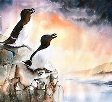 Razorbills Rock by Peter Williams