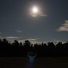 Under a Moonlit Sky by KBelleau