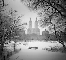 Central Park - Winter Wonderland by Vivienne Gucwa