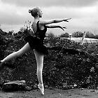 Rural Ballet by Eleanor Mayne