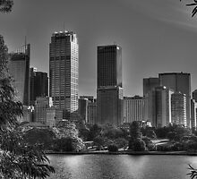 Sydney in Black and White by PollyBrown