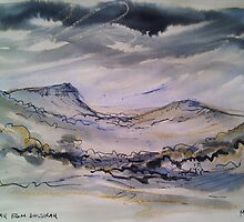 'Dolgellau from Dolserau' by Martin Williamson (©cobbybrook)