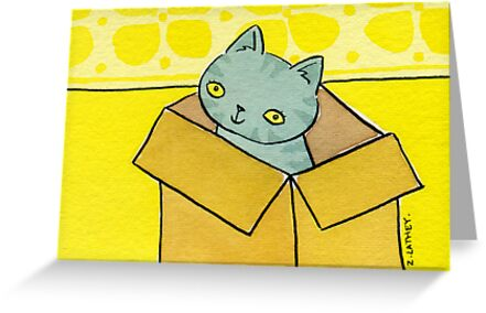 Cat-in-a-Box by zoel