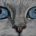 Cat's Eyes by Felicity Deverell
