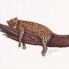 Lazy Leopard by Rob Johnston
