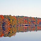 Autumn Along The Wisconsin River by kkphoto1