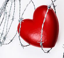 Heart shape surrounded with barbed wire by Sami Sarkis