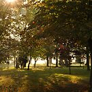 English Autumn. Village Green. Merton.  Norfolk by Paul Holman