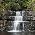 Waterfall - Bowlees Beck by Chris Monks