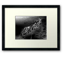 Wreck Framed Print