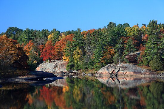 Autumn Colour Mississaugi River near Blind River Ontario Canada by Eros Fiacconi (Sooboy)