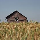 Leaning Alberta Farm Building by JasPeRPhoto