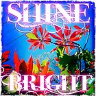 Shine Bright by Sarah ORourke