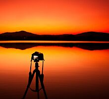 Portrait of a DSLR camera? by Dinni H