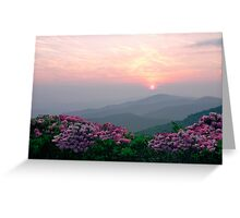 Rhododendron Sunrise Greeting Card