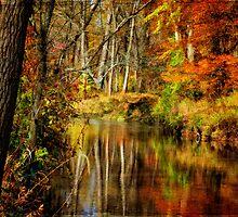 Bob's Creek by Lois  Bryan