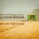 Down on the Farm- Challenge Winner Banner by vividpeach