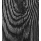 Black Oak iPhone Case by Autographics