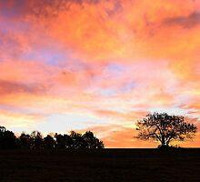 Daybreak - A Sky on Fire by T.J. Martin