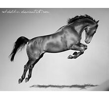 Jumping Horse Photographic Print