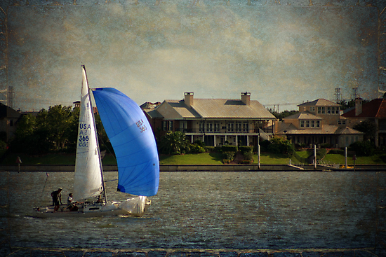 Sailing on Clear Lake by gnolanphoto