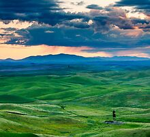 Palouse Storm by DawsonImages